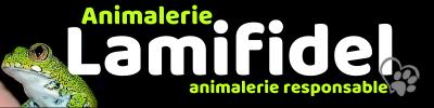 entete-lamifidel_mobile