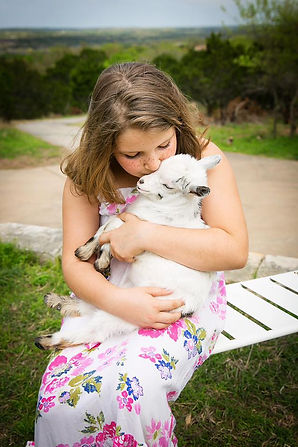 A girl holding a goat