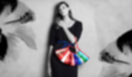 axel website bag ._edited.png