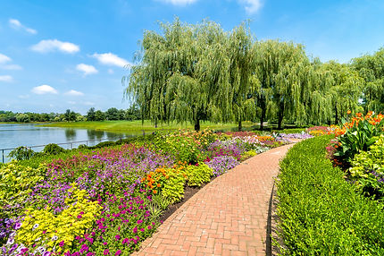 chicago-botanical-garden.jpg