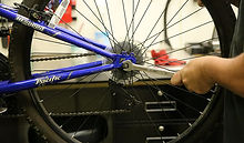 never-ending-cycles-2.jpg