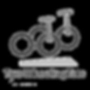 two-wheeling-tots-logo-grey_medium.webp