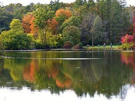 morton-arboretum-lake.jpg