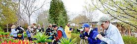 garden photos.jpg