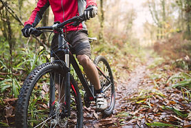 mountain-bike-spring.jpg