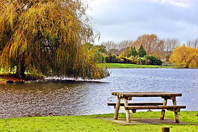 picnic site.jpg