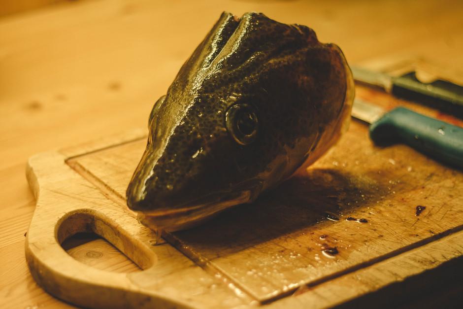 La tête de poisson