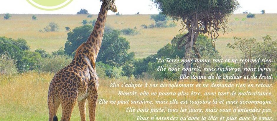 Rencontre avec une Girafe: L'Univers entier, la Terre ne sont qu'Amour