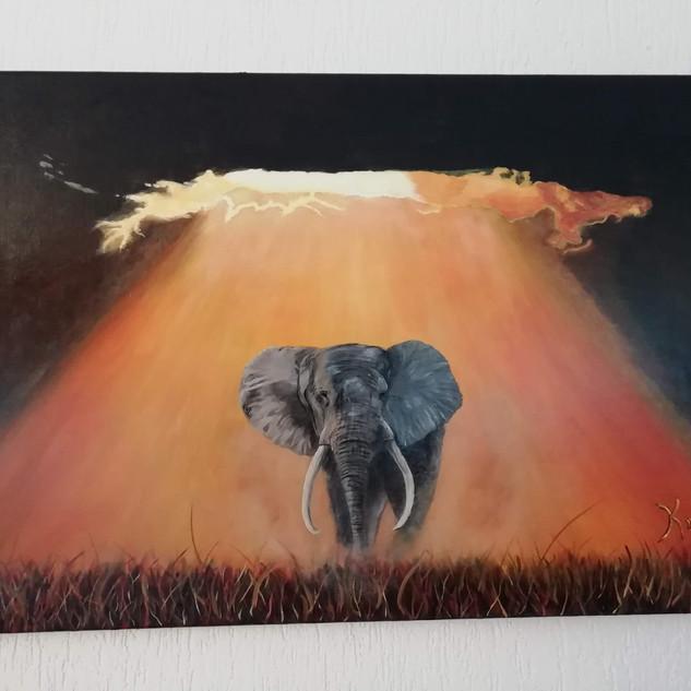 L'Illumination de l'éléphant