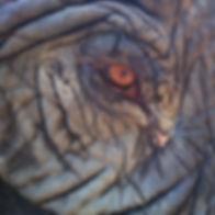 FJANE elephant.jpeg
