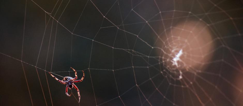 Un monde inter-connecté