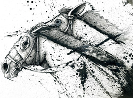horseHead_web.jpg