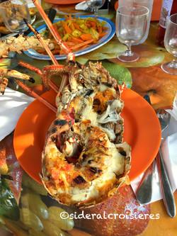 barbecue plage Tobago Cays