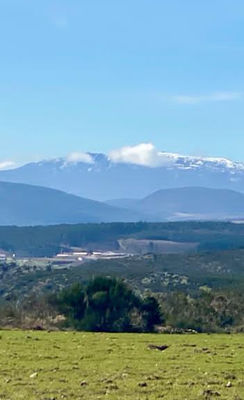 torre met sneeuw achtergrond.jpg
