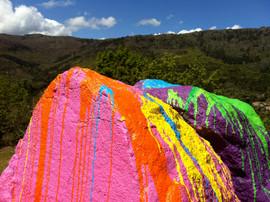 geschilderde rock van Hoogenboom.jpg