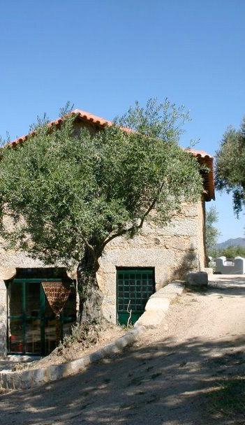 Casa das Pombas terras.jpg