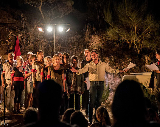 performance in the olive grove.jpg