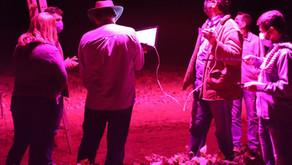 A pesquisa para suplementação luminosa a campo avança.