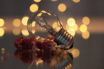 Lamp - Stilleven