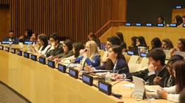 Mastering Model UN Debate