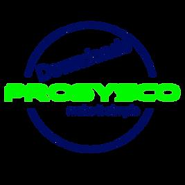 downloads P- Logo Rund OHNE hintergrund.
