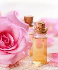 Rose Absolute oil and pink blossom