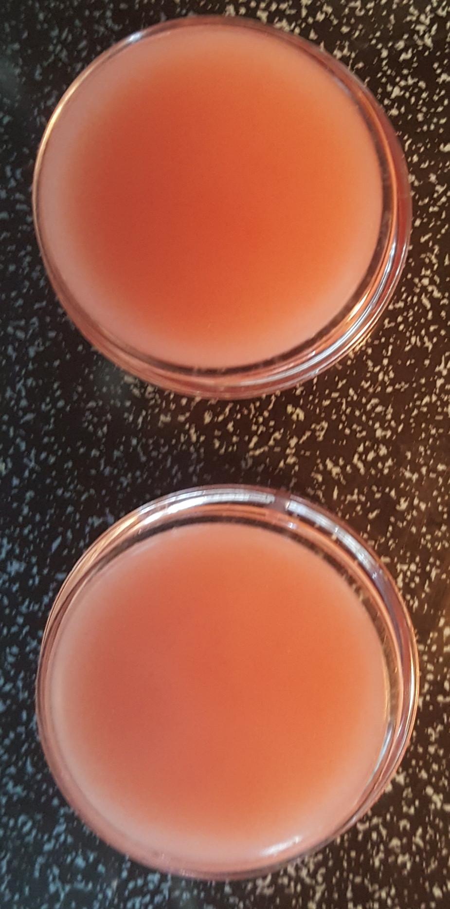 Natural rose lip gloss