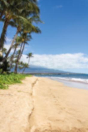 beach-1630536_1920.jpg