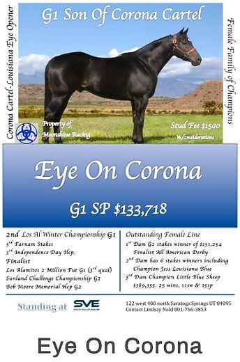 Eye On Corona