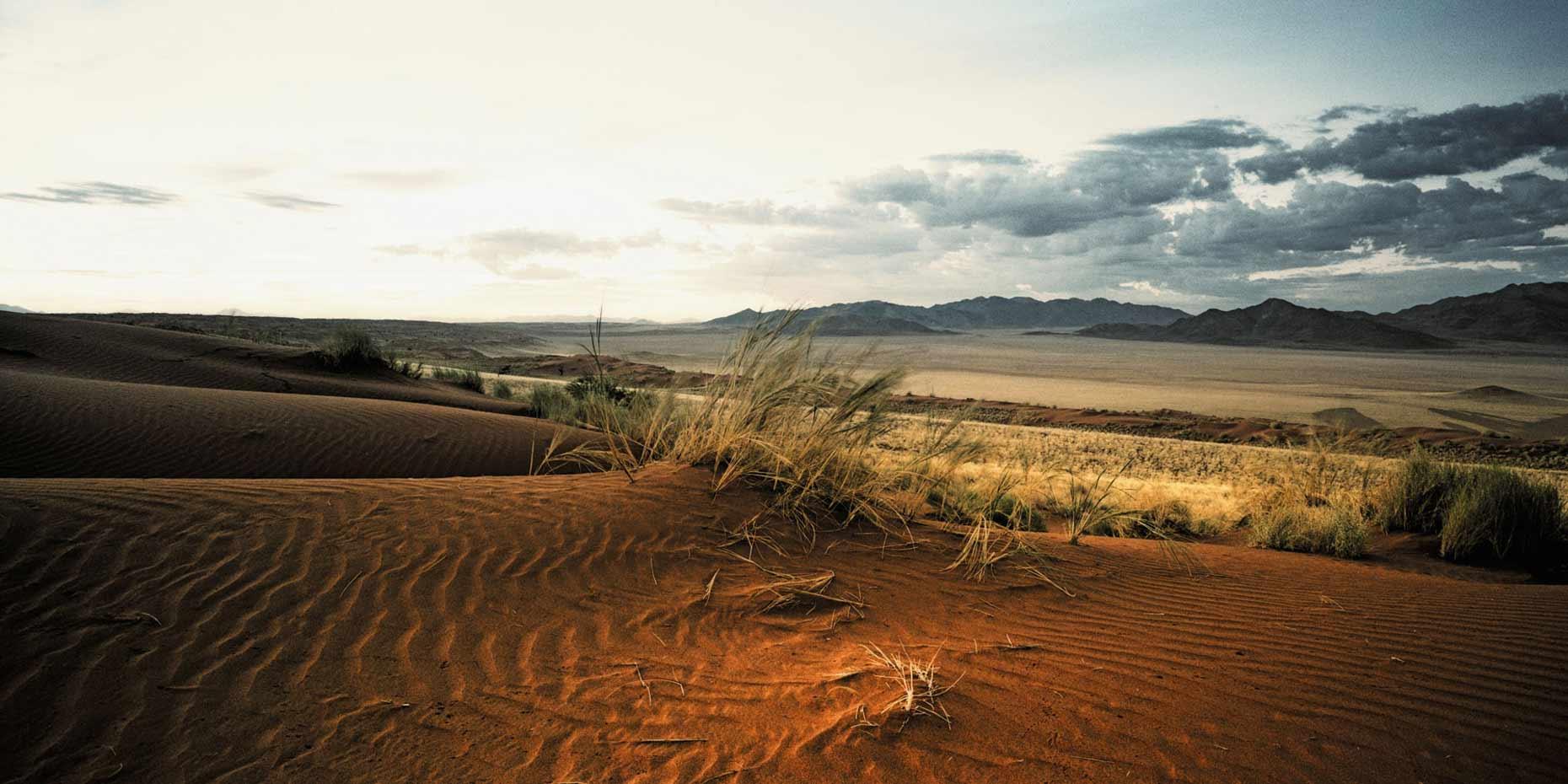 fotografie-rotterdam-fotograaf-pim-vuik-namibia54-L.jpg