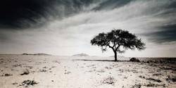 fotografie-rotterdam-fotograaf-pim-vuik-namibia32-L.jpg