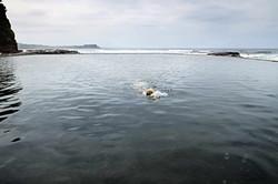 tidal-pools-australia-pim-vuik-fotografie-film-rotterdam-03.jpg