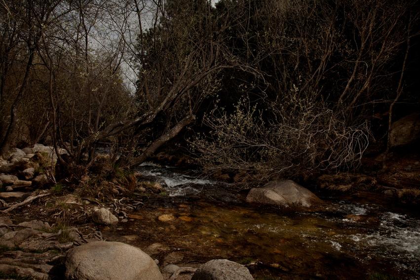 oliver-haupt-silence-3_med.jpg