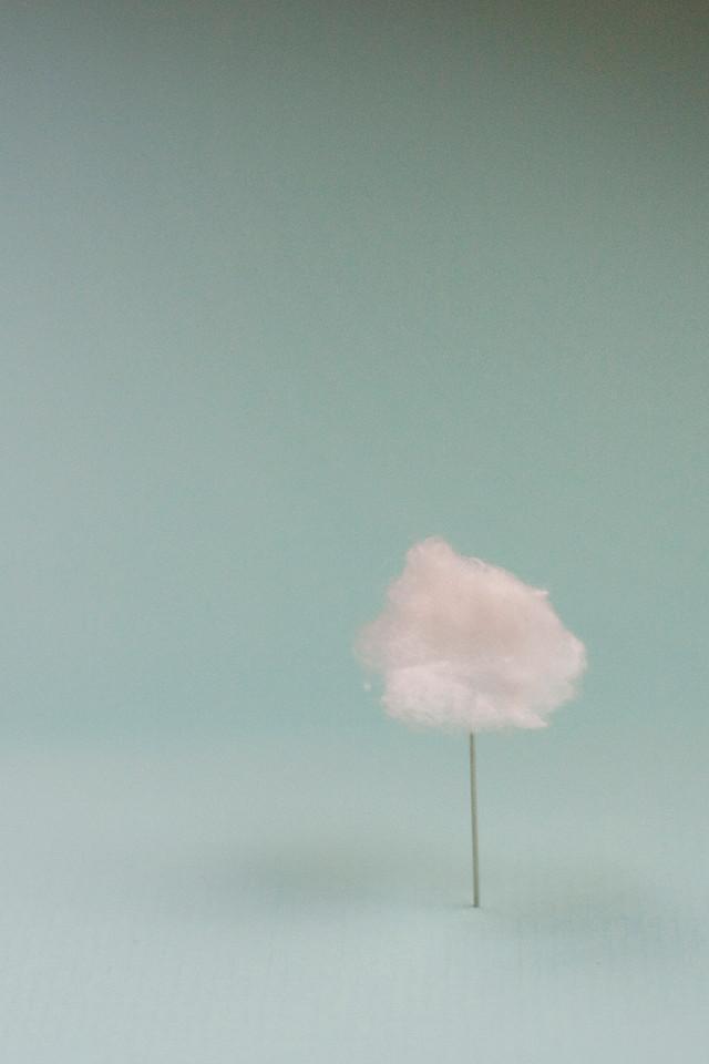 81-Lies Engelen Photography.jpg