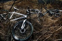 oliver-haupt-bike-3-web_med.jpeg