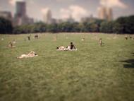 NY in miniature7.jpg