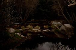 oliver-haupt-silence-web-01_med.jpg