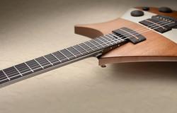 tao guitars 3.jpeg