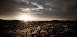 fotografie-rotterdam-fotograaf-pim-vuik-namibia37-L.jpg