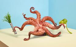 Fricote-Octopus-Web.jpg