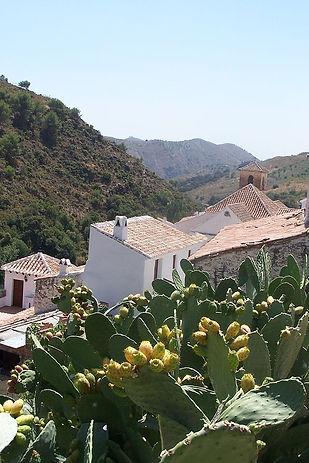 advies aankoop woning andalucia