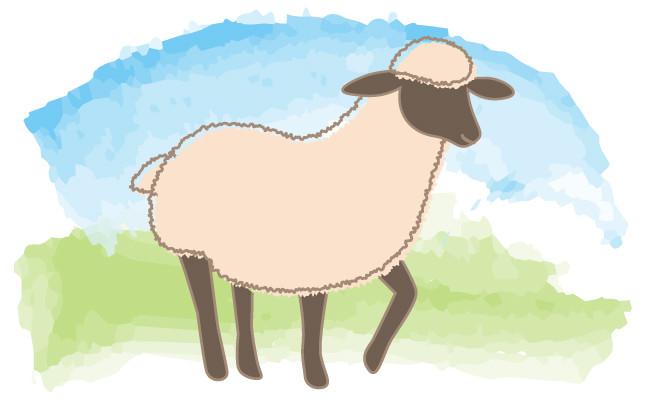 工程4の羊のイラストイメージ