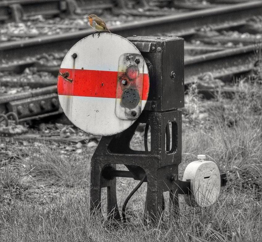 Waiting for the train - © Emma Seddon.