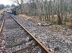 Off-track P-Way - © Mark Rosebury
