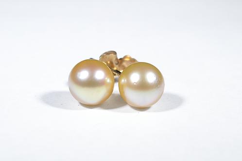 Golden Pearl Earrings, in 14k Yellow Gold
