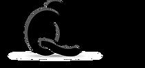 Logotípo da QInesis