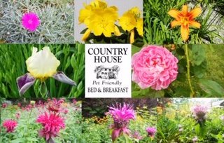 Color Me! A Coloring Book by Country House Bed & Breakfast