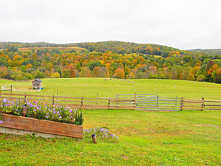 Autumn in the Adirondacks is Sense-ational!