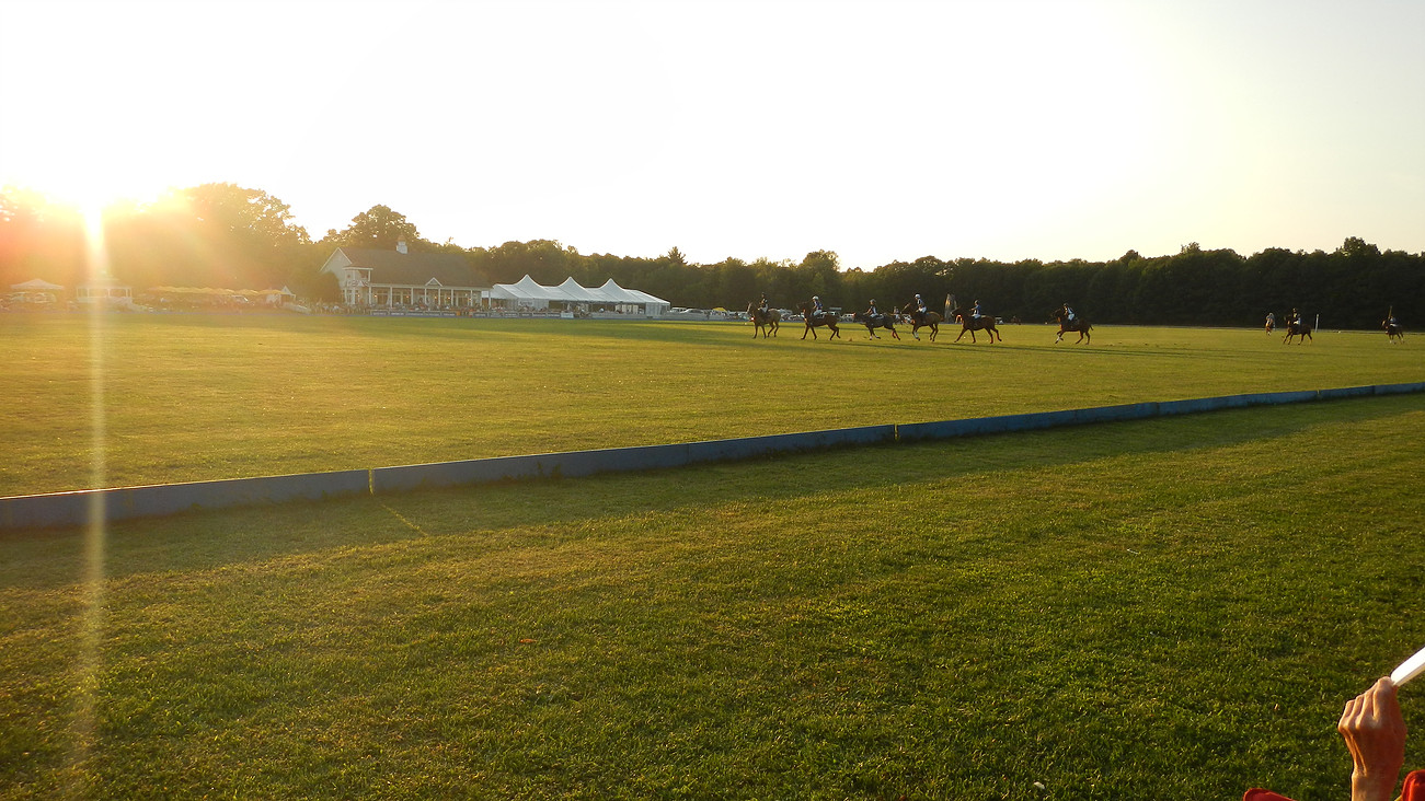 A Saratoga Polo match