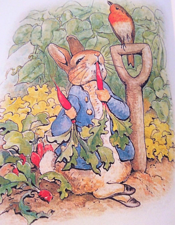 Peter in the garden